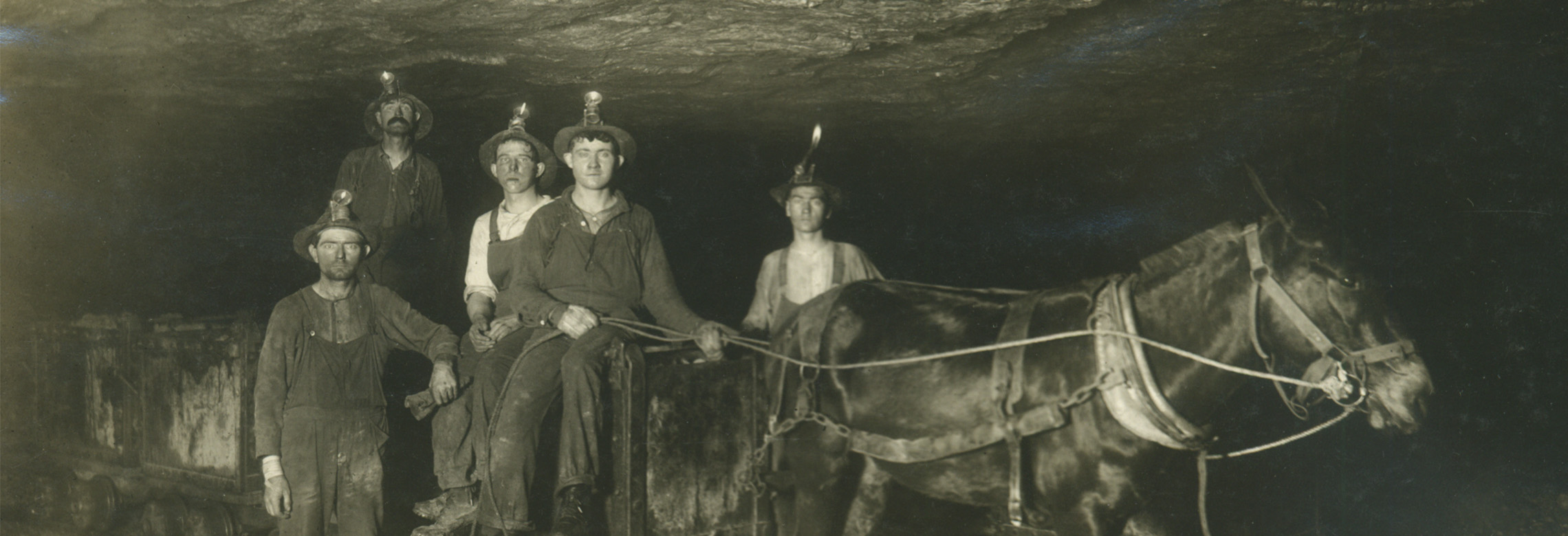 Miners with mule